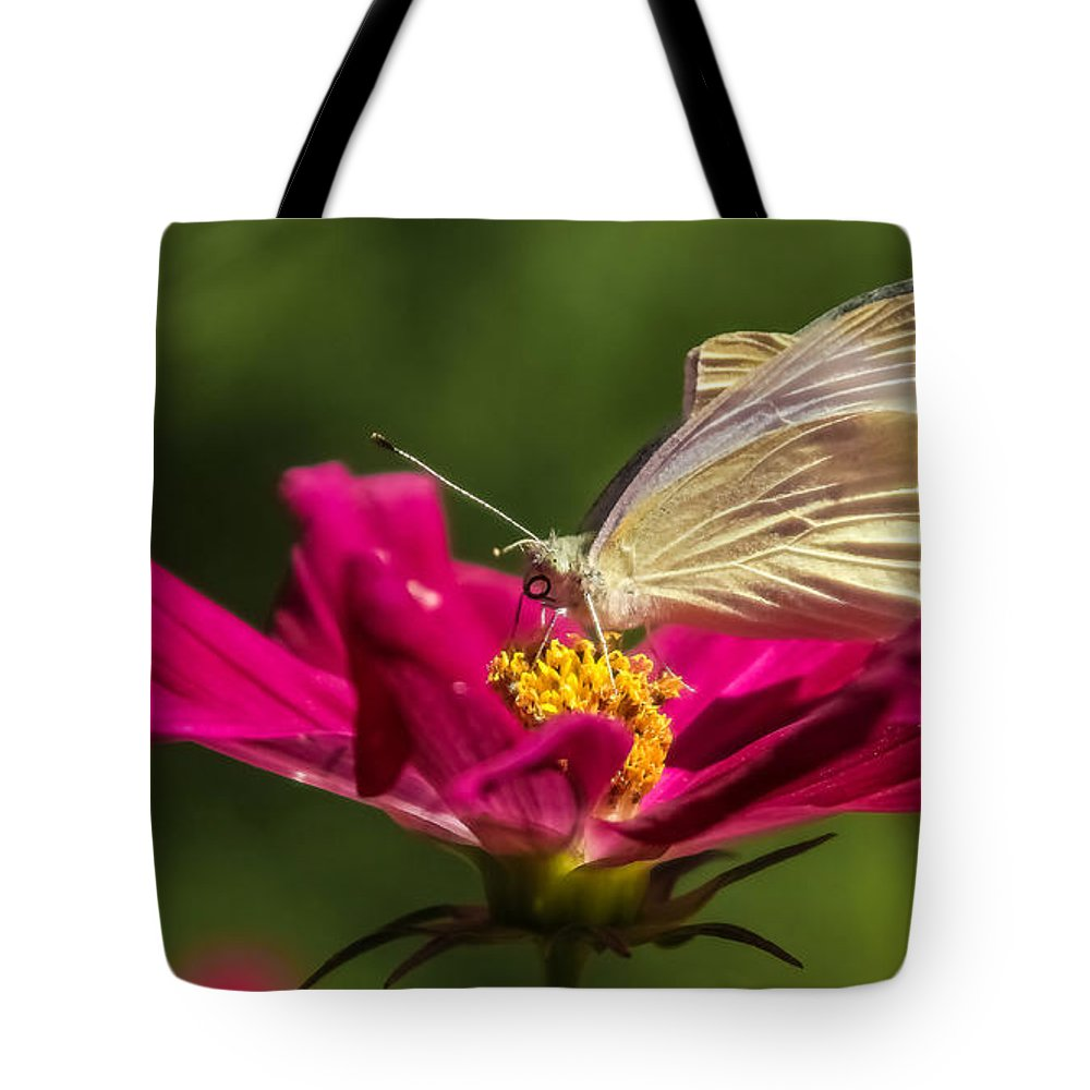 Butterfly Tote Bag featuring the photograph A Georgous Butterfly Macrophotography by Stwayne Keubrick