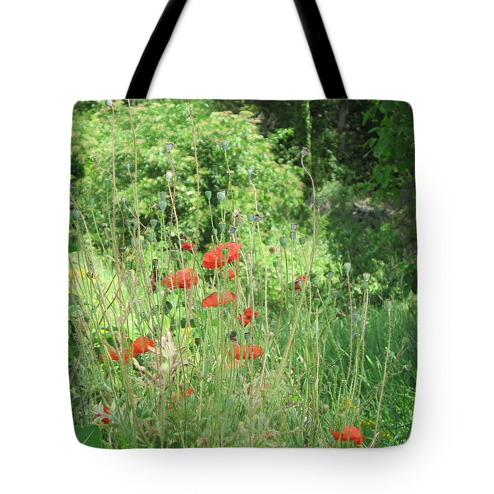 Poppies Tote Bag featuring the photograph A Glimpse Of Poppies by Pema Hou
