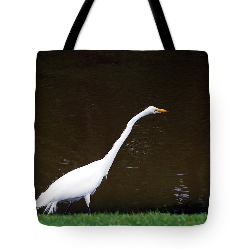 The Great Egret Tote Bag featuring the photograph A Great Egret On Hilton Head Island by Kim Pate