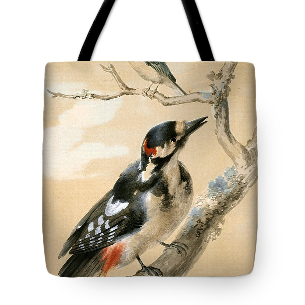 Aert Schouman Tote Bag featuring the painting A Great Spotted Woodpecked And Another Small Bird by Aert Schouman