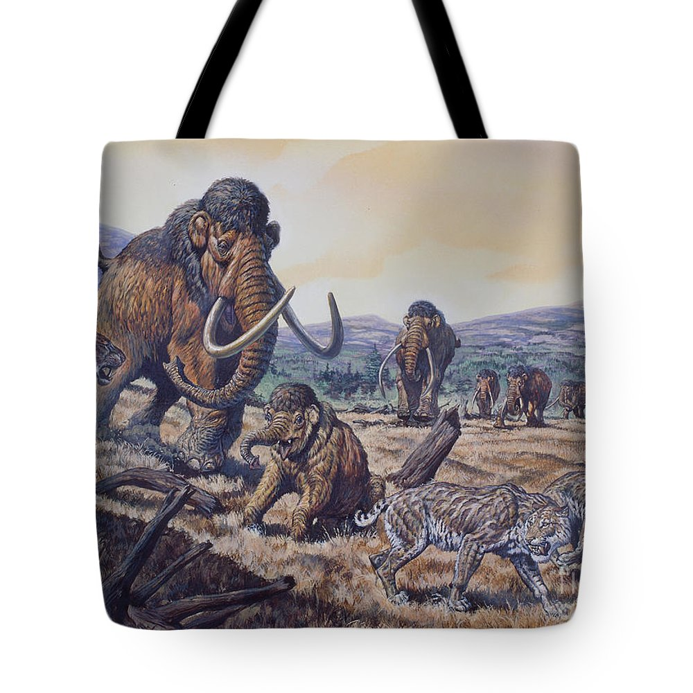 A Herd Of Woolly Mammoth And Scimitar Tote Bag