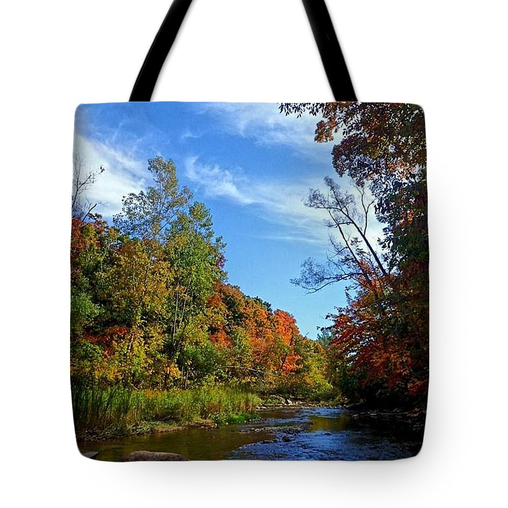 Lake Tote Bag featuring the photograph A Hidden Creek by Kelly Mills