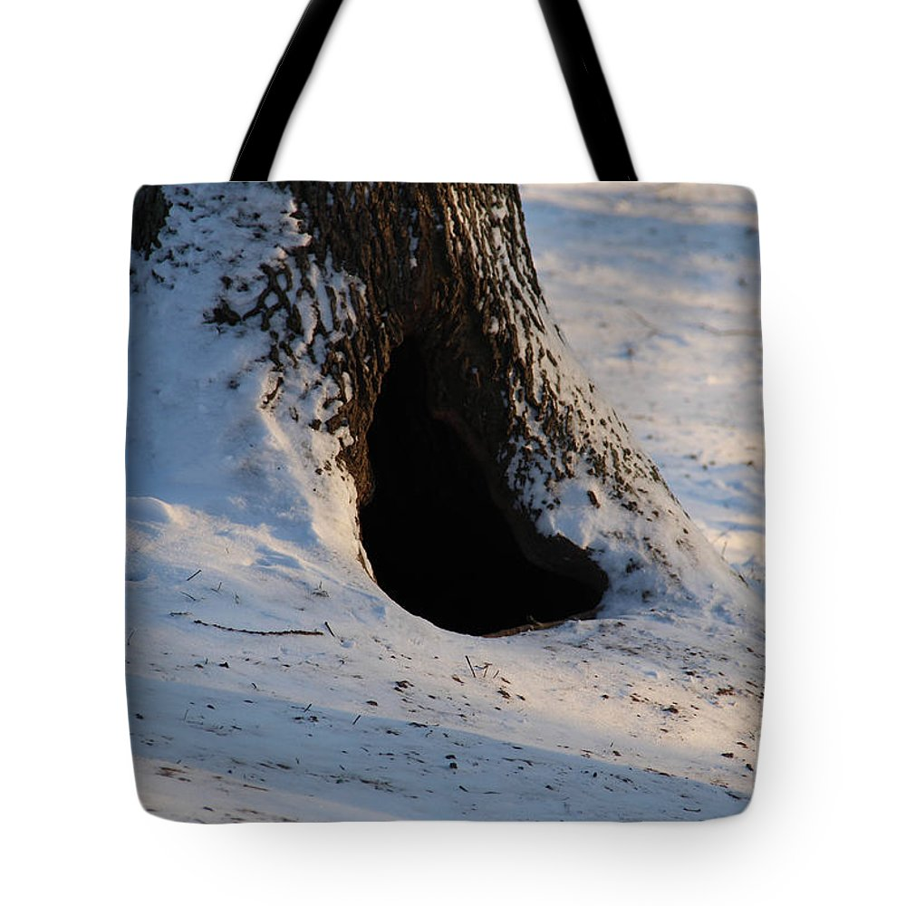 Hollow Tote Bag featuring the photograph A Hollow In A Tree In Winter by Kerstin Ivarsson