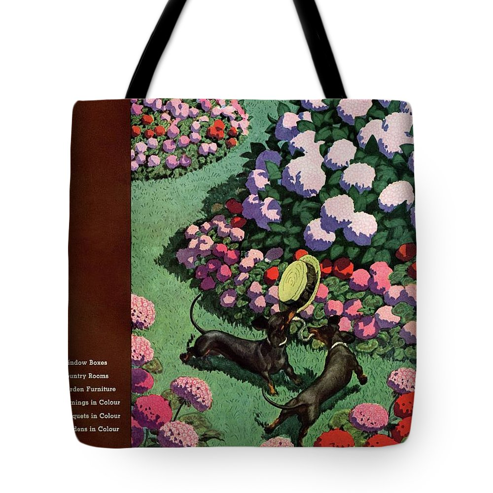Illustration Tote Bag featuring the photograph A House And Garden Cover Of Dachshunds With A Hat by Pierre Brissaud