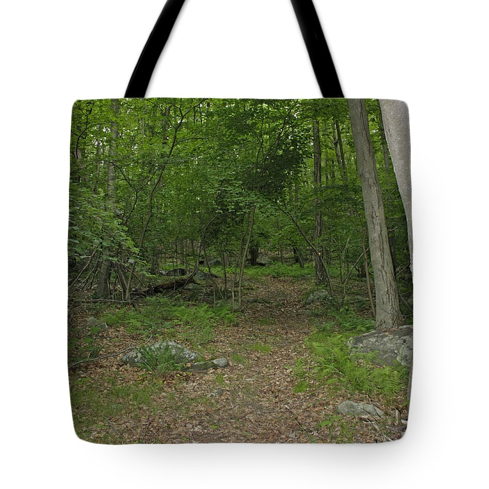 Forest Path Tote Bag featuring the photograph A Leisurely Stroll Through The Putnam County Veteran Memorial Park Woods by James Connor