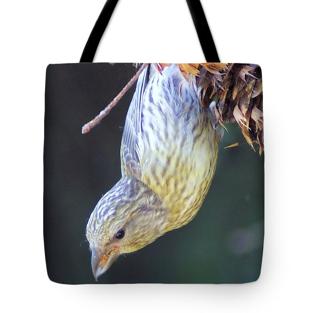 Fowl Tote Bag featuring the photograph A Little Bird Eating Pine Cone Seeds by Jeff Swan