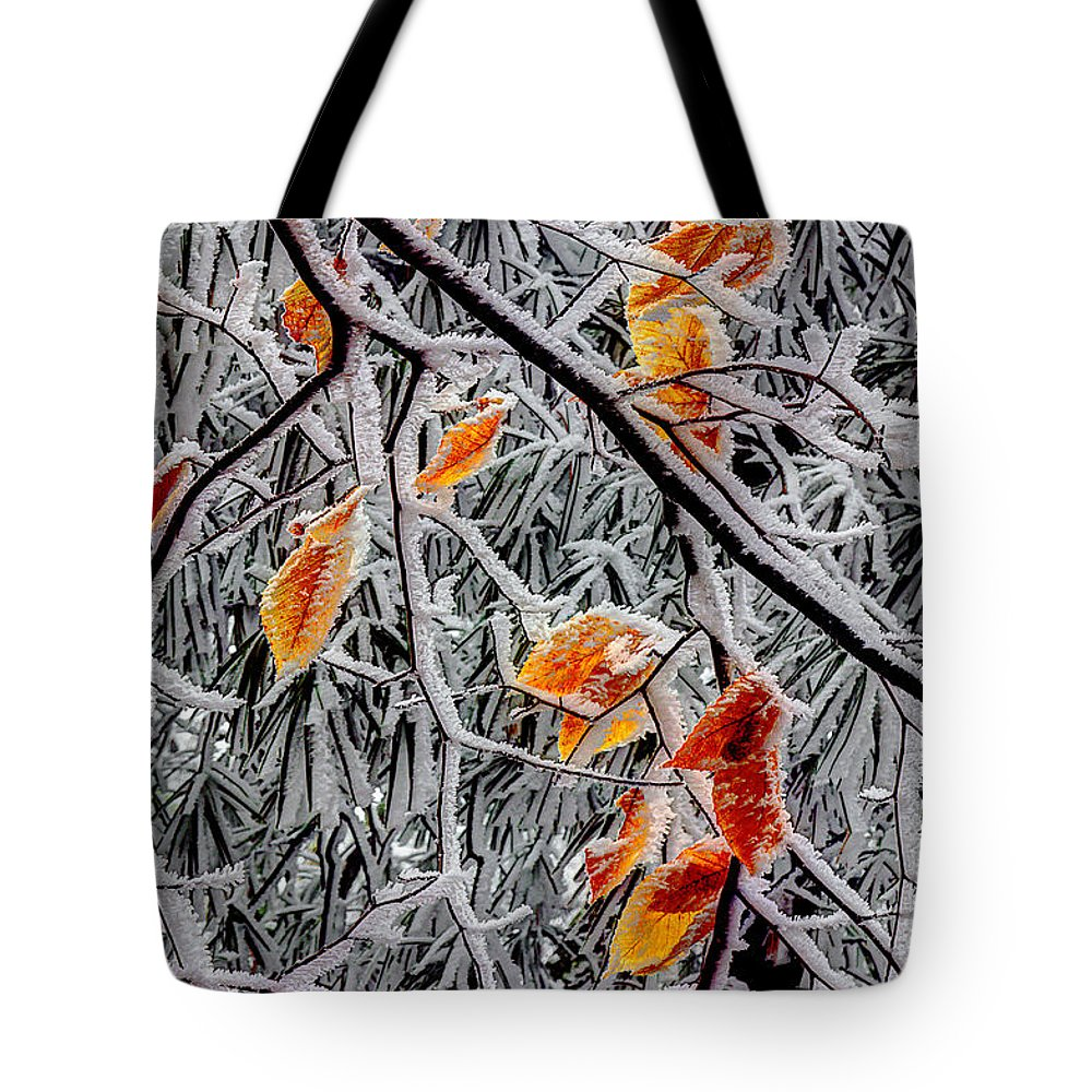 Snow Leaves Tote Bag featuring the photograph A Little Cheer On A Snowy Day by Michael Eingle