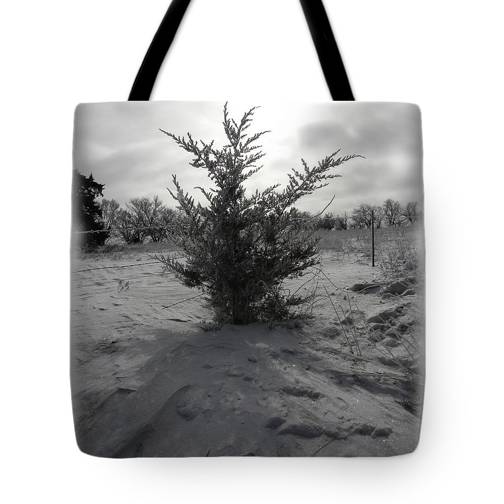 Lonely Tote Bag featuring the photograph A Lonely Little Prairie Ceder by Sheri Lauren