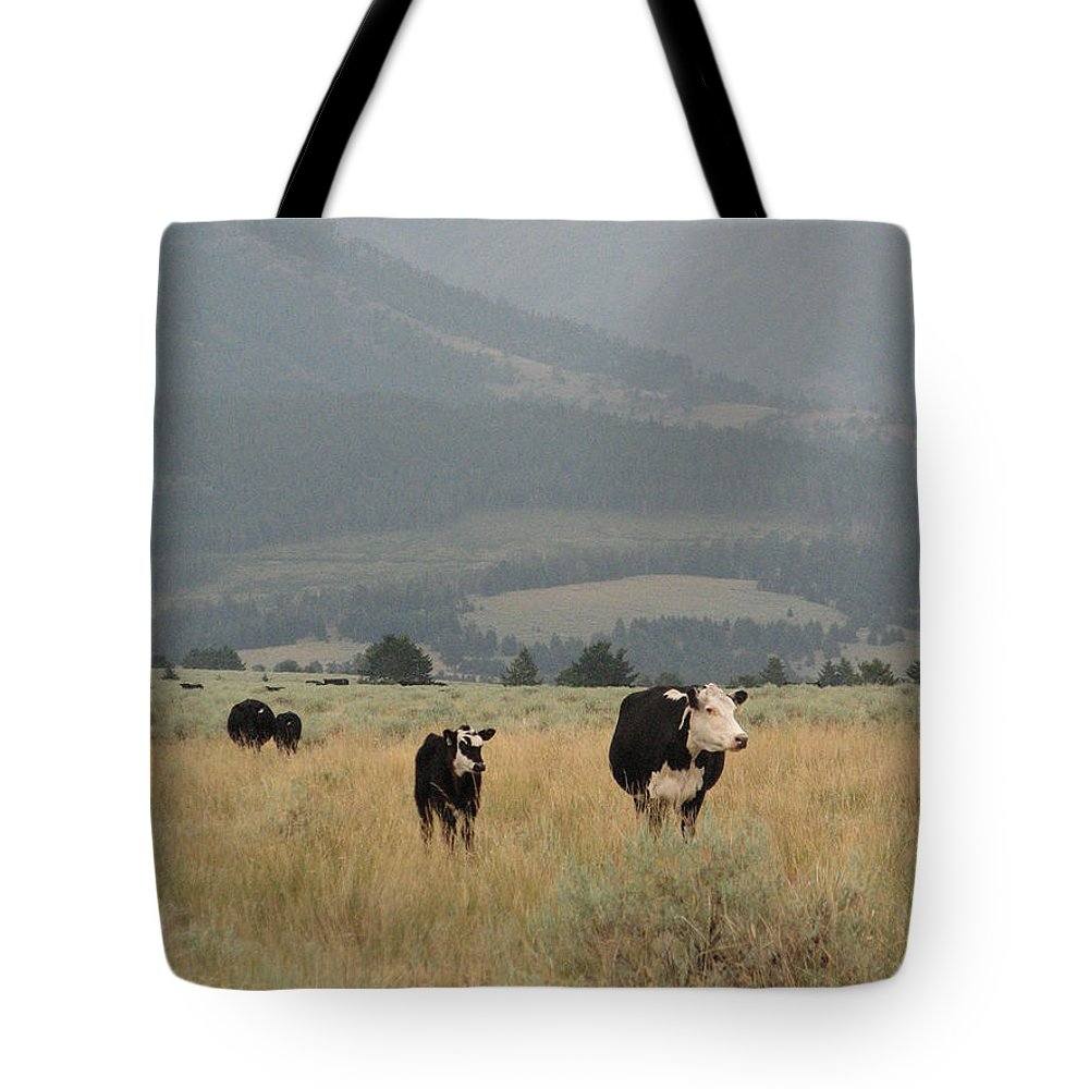 Cow Tote Bag featuring the photograph A Montana Memory by Stacey May