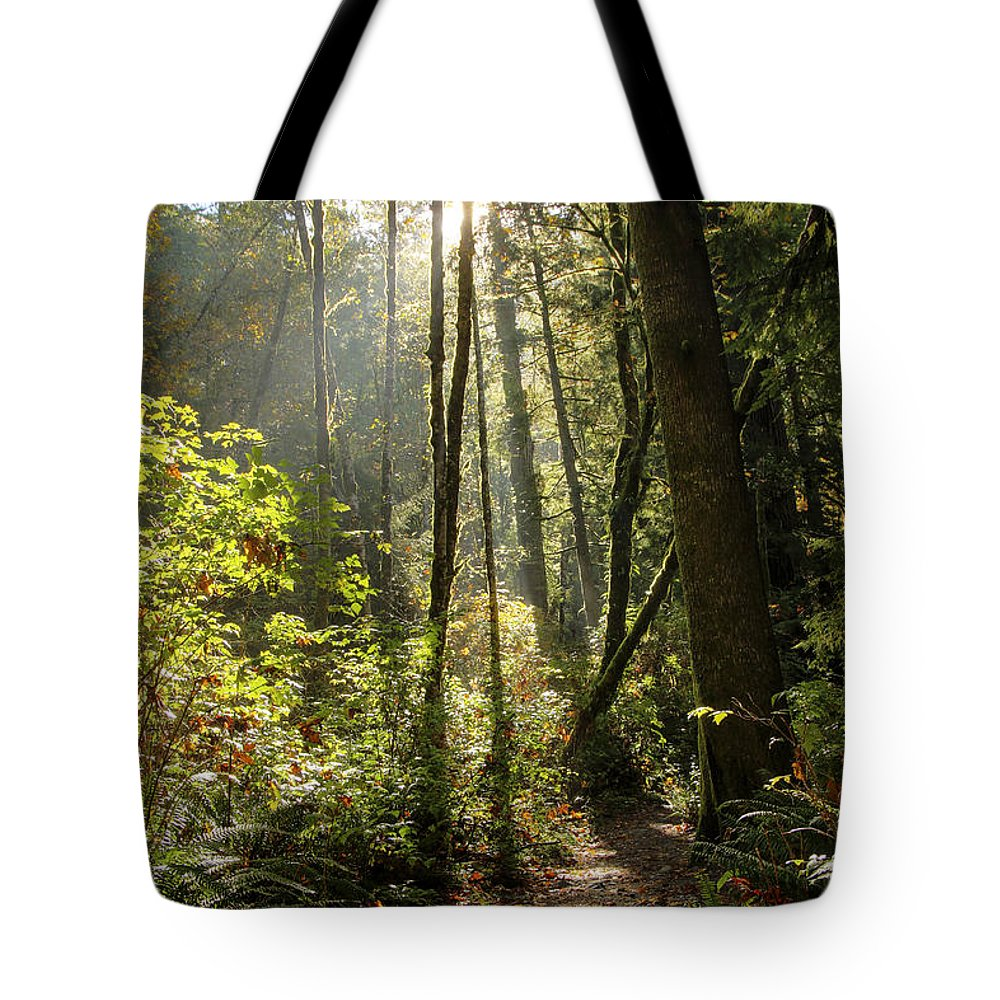 Landscape Tote Bag featuring the photograph A Narrow Trail by Darleen Stry