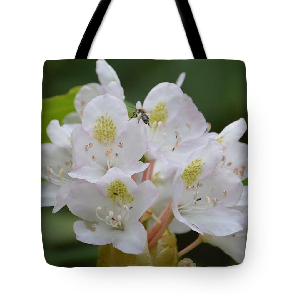 Nature Tote Bag featuring the photograph A Painful Surprise by Susan Ayers