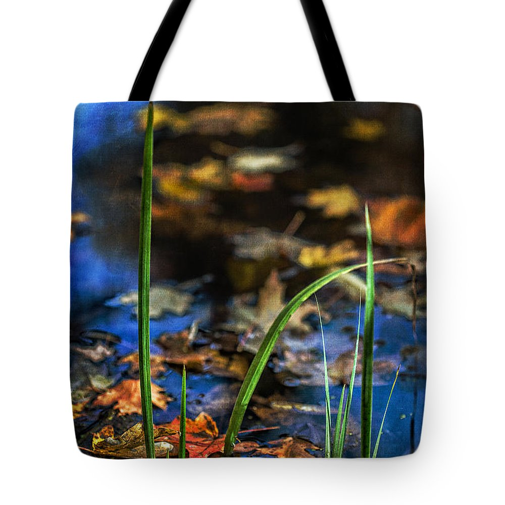 A Place Called Home Tote Bag featuring the photograph A Place Called Home by Dale Kincaid