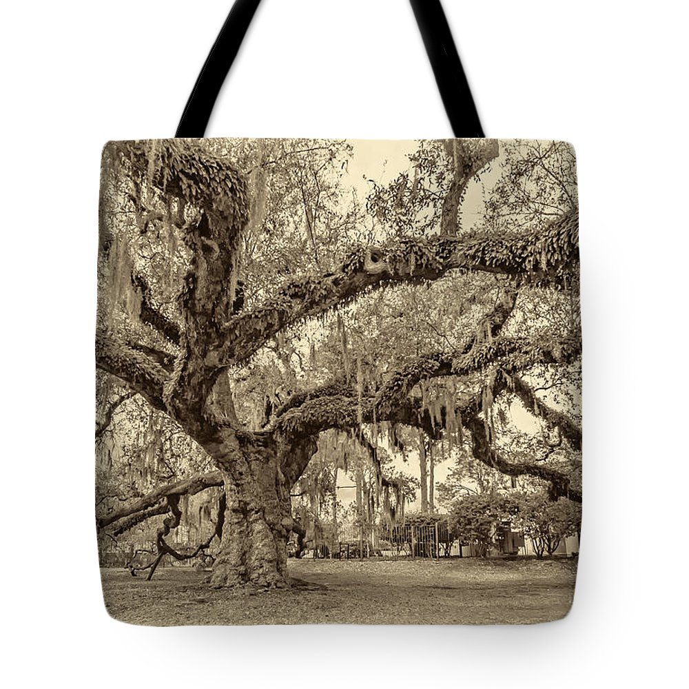 Nola Tote Bag featuring the photograph A Place For Dying Sepia 2 by Steve Harrington