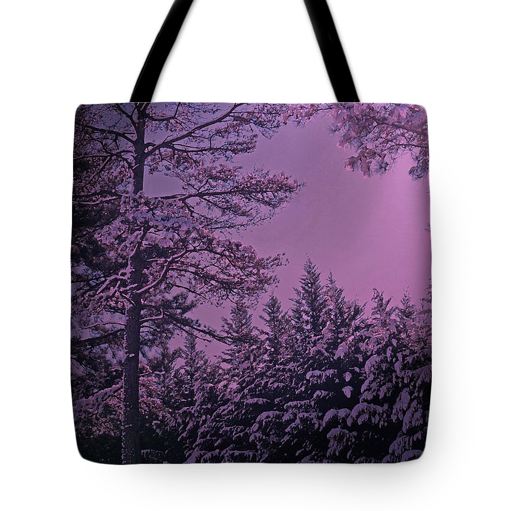 A Quiet Snowy Night Tote Bag featuring the photograph A Quiet Snowy Night by Lydia Holly
