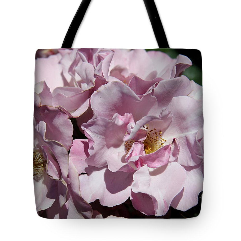 Floribunda Roses Tote Bag featuring the photograph A Rose Named Blueberry Hill by Christiane Schulze Art And Photography