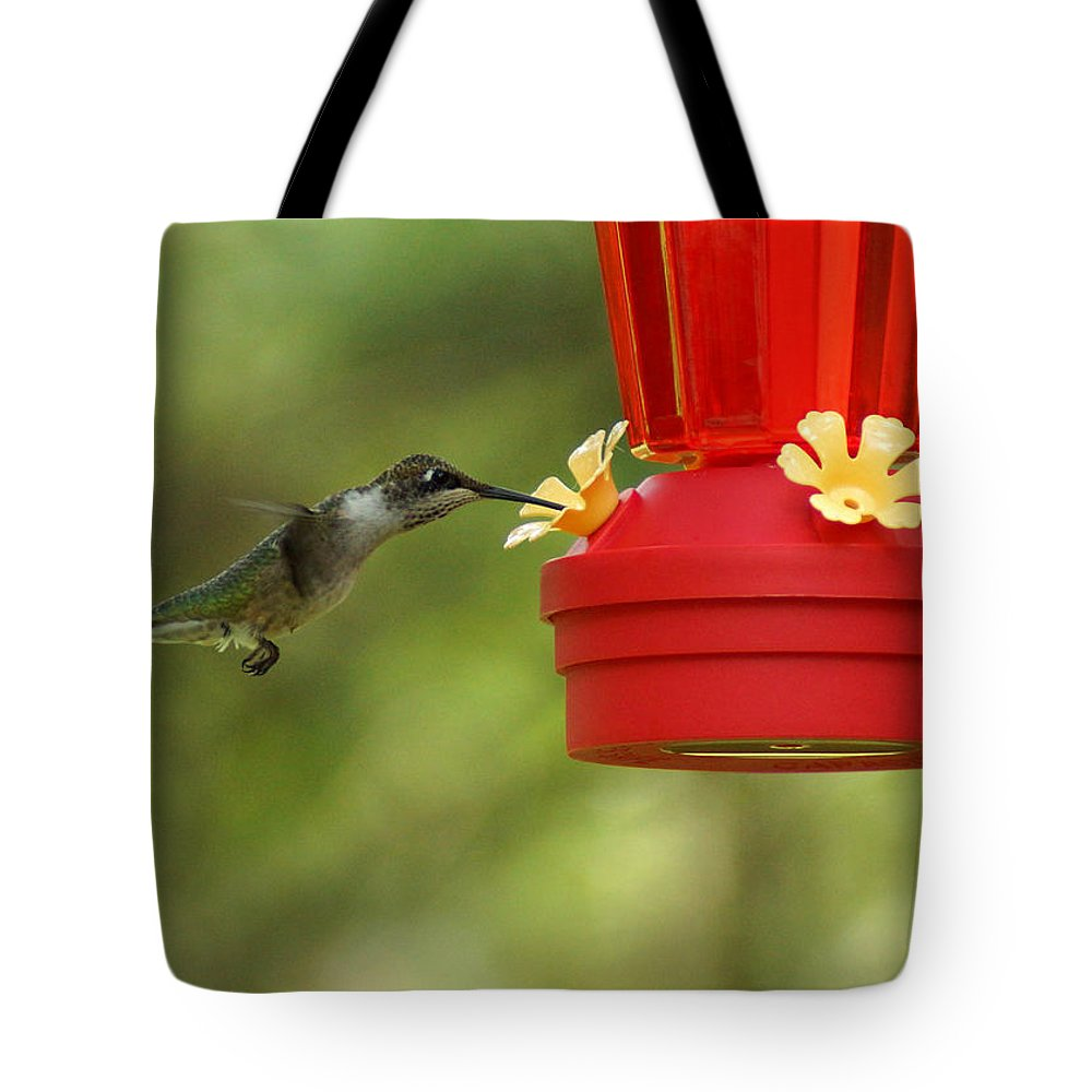 A Ruby-throated Hummingbird Tote Bag featuring the photograph A Ruby-throated Hummingbird by Kim Pate