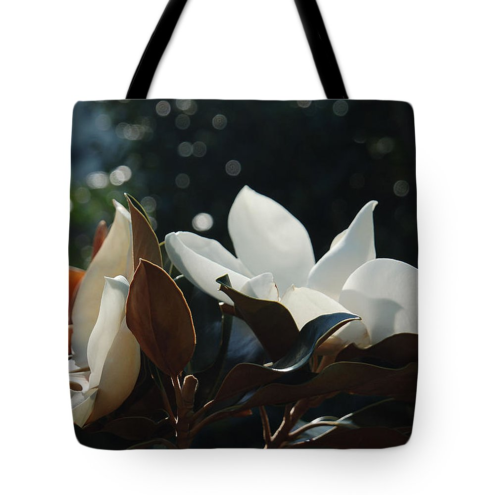Magnolia Tote Bag featuring the photograph A Sea Of Magnolias by Suzanne Gaff