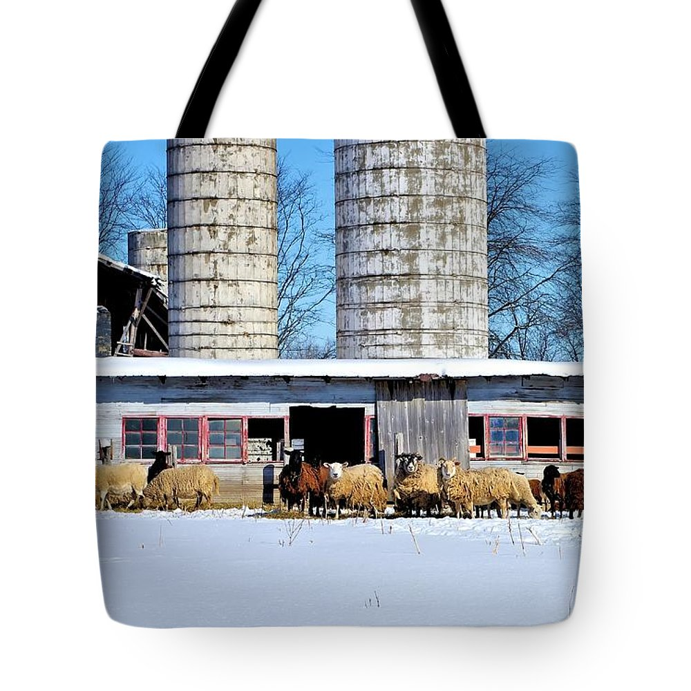 Wool Tote Bag featuring the photograph A Sheepish Winter's Day by Patti Smith