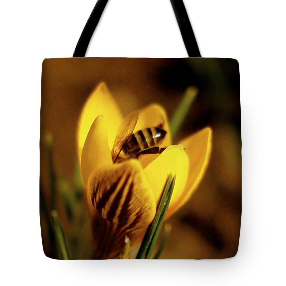 Yellow Tote Bag featuring the photograph A Sign Of Spring by Rona Black