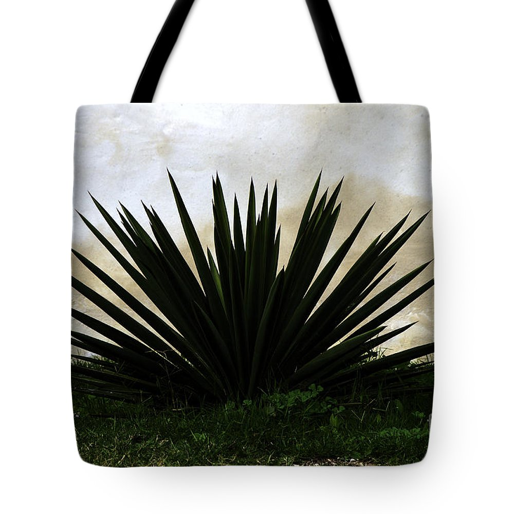 Simple Tote Bag featuring the photograph A Simple Yucca by Gary Richards
