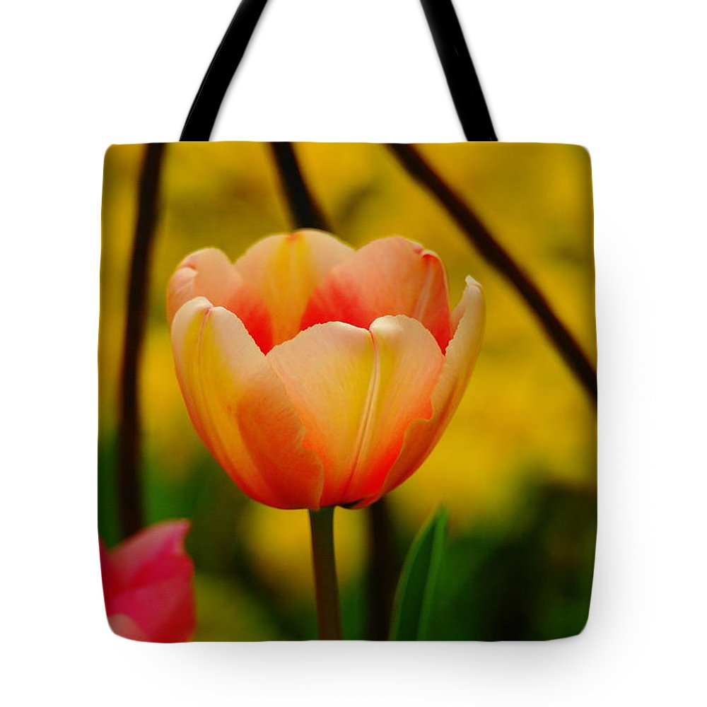 Flowers Tote Bag featuring the photograph A Single Tullip by Jeff Swan