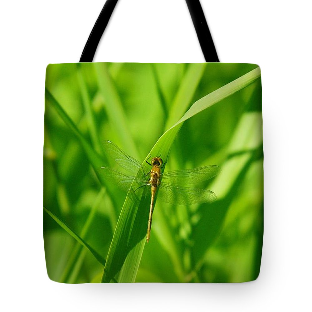 Tote Bag featuring the photograph A Small Dragonfly by Jeff Swan