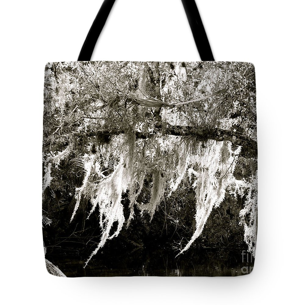 Florida Tote Bag featuring the photograph A Swayin' by Anita Lewis
