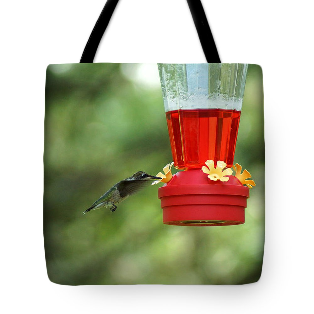 A Ruby-throated Hummingbird Tote Bag featuring the photograph A Tiny Little Ruby-throated Hummingbirds by Kim Pate