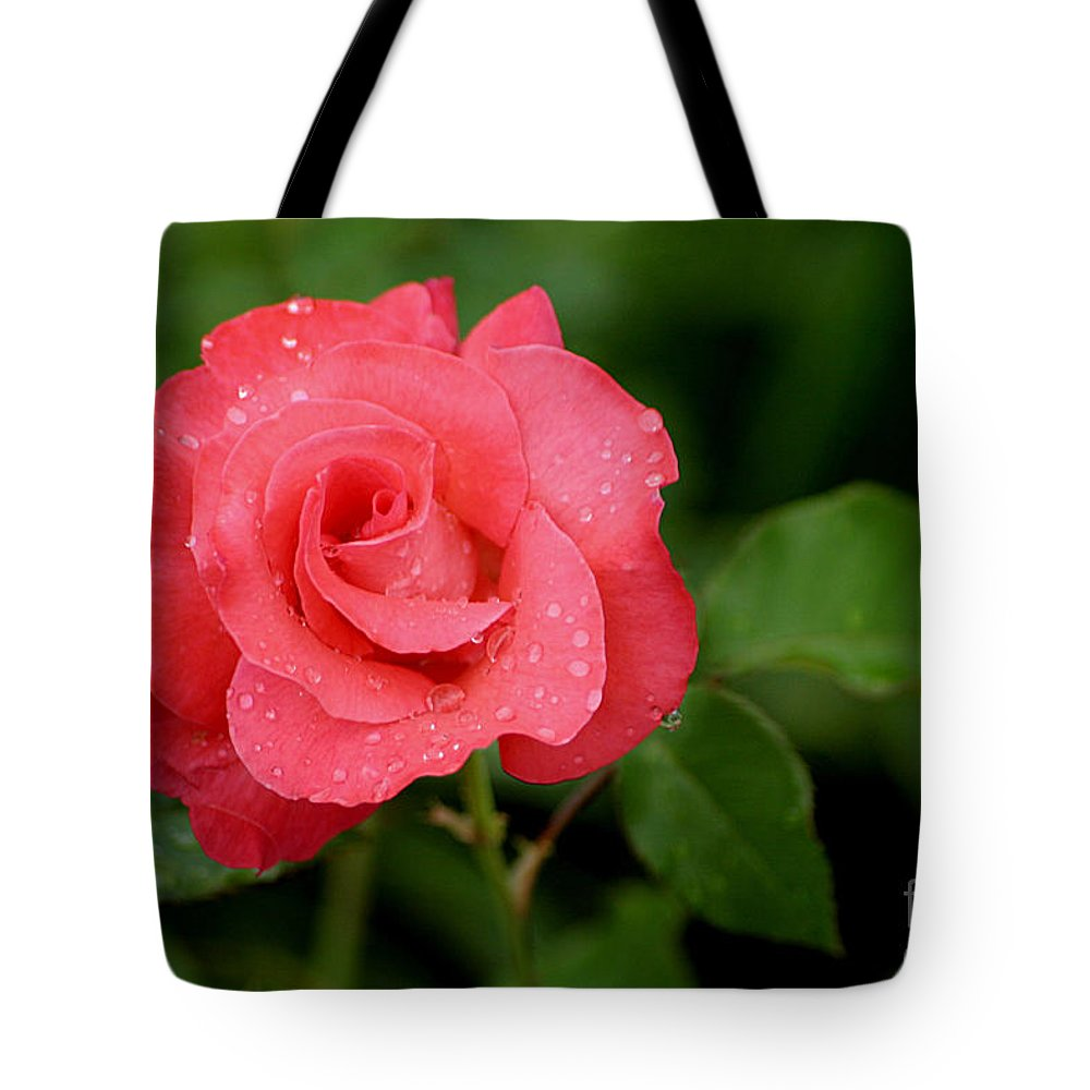 Rose Tote Bag featuring the photograph A Touch Of Class by Living Color Photography Lorraine Lynch