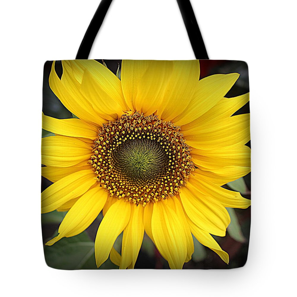 Sunflower Tote Bag featuring the photograph A Touch Of Sunshine - Sunflower by Dora Sofia Caputo Photographic Design and Fine Art