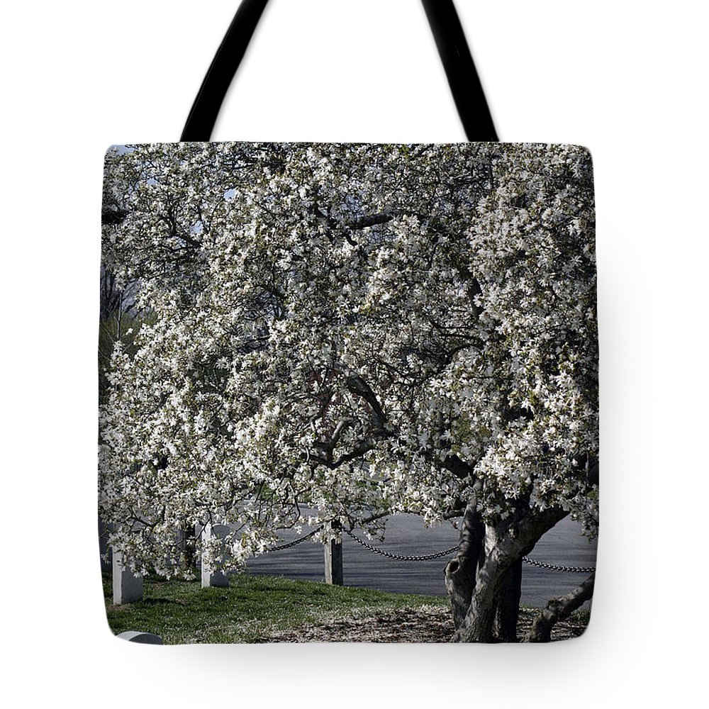 Arlington National Cemetery Tote Bag featuring the photograph A Tree In Arlington by Cora Wandel