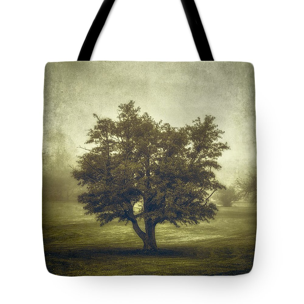 Tree Tote Bag featuring the photograph A Tree in the Fog 2 by Scott Norris