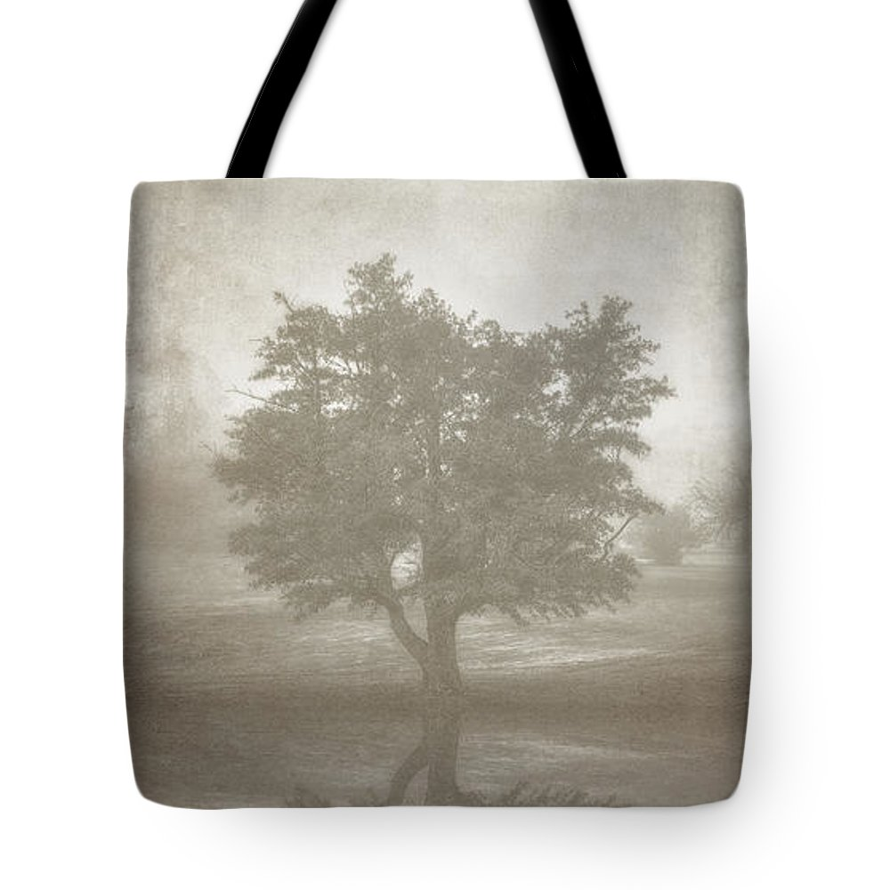 Tree Tote Bag featuring the photograph A Tree in the Fog 3 by Scott Norris