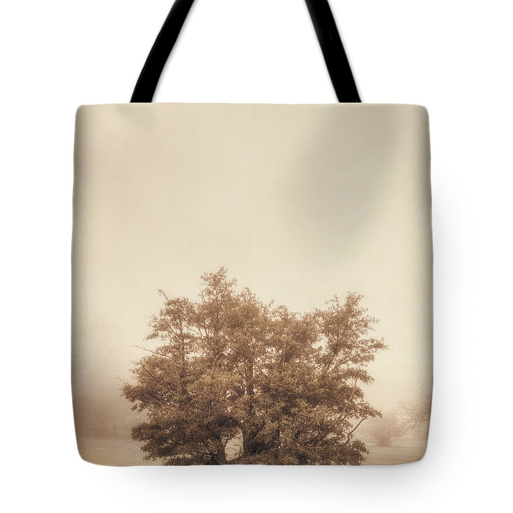 Tree Tote Bag featuring the photograph A Tree in the Fog by Scott Norris