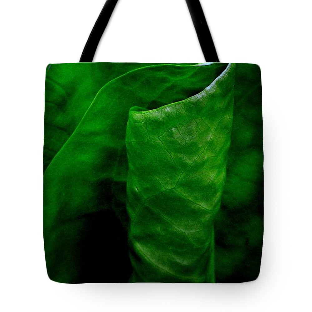 Newel Hunter Tote Bag featuring the photograph A Walk In The Woods 2 by Newel Hunter