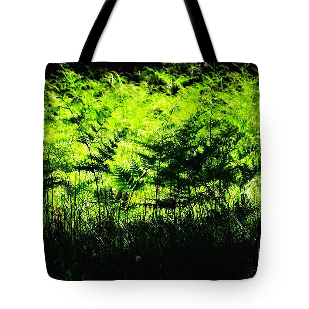 Newel Hunter Tote Bag featuring the photograph A Walk In The Woods 7 by Newel Hunter