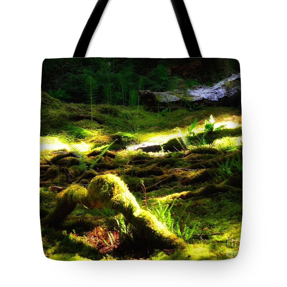 Newel Hunter Tote Bag featuring the photograph A Walk In The Woods 8 by Newel Hunter