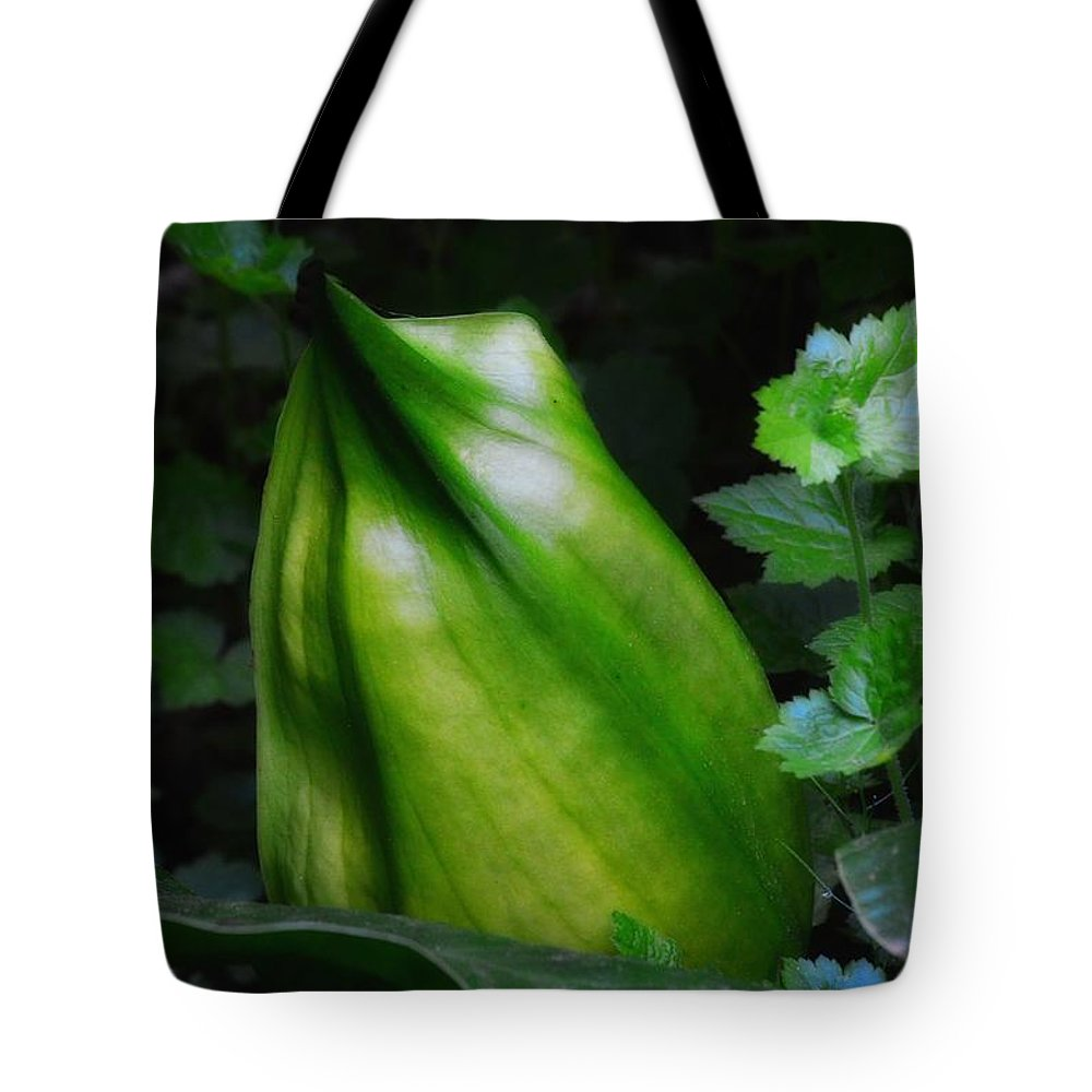 Newel Hunter Tote Bag featuring the photograph A Walk In The Woods1 by Newel Hunter