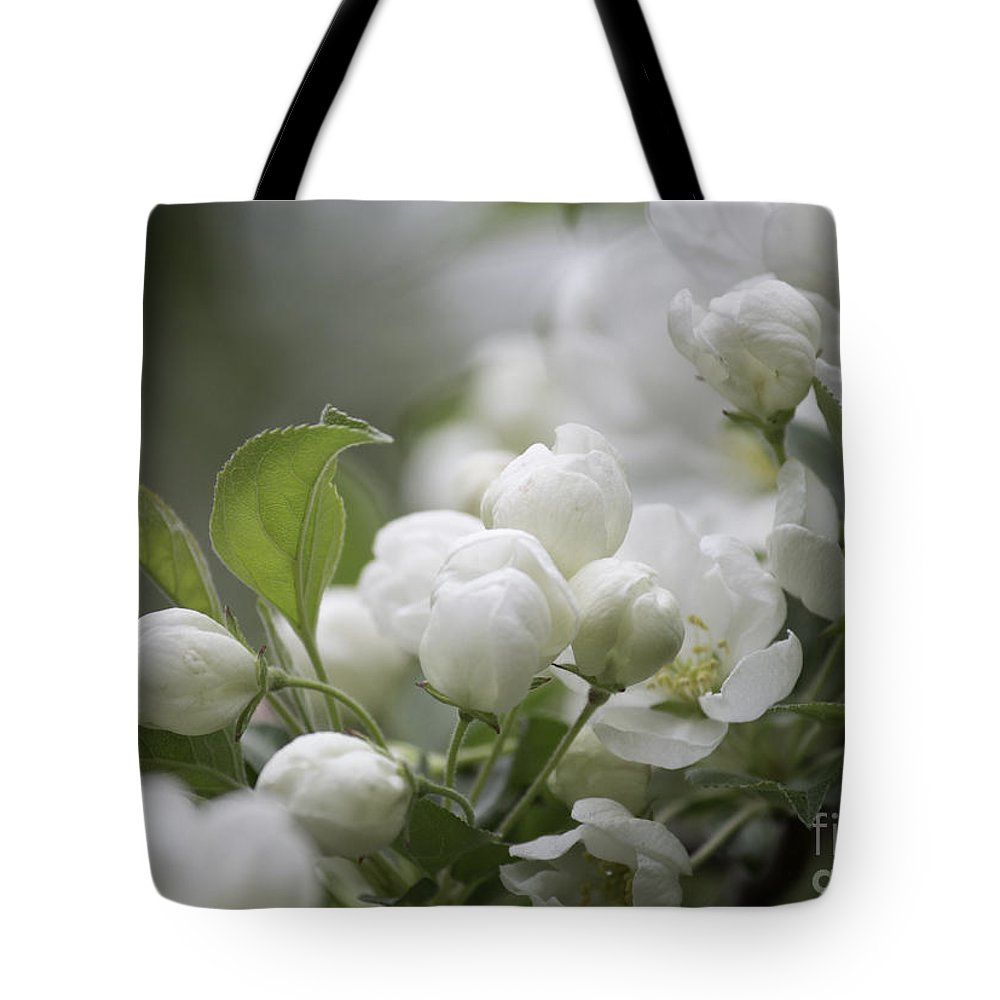 Crab Apple Tote Bag featuring the photograph A Whisper Of Spring by Arlene Carmel