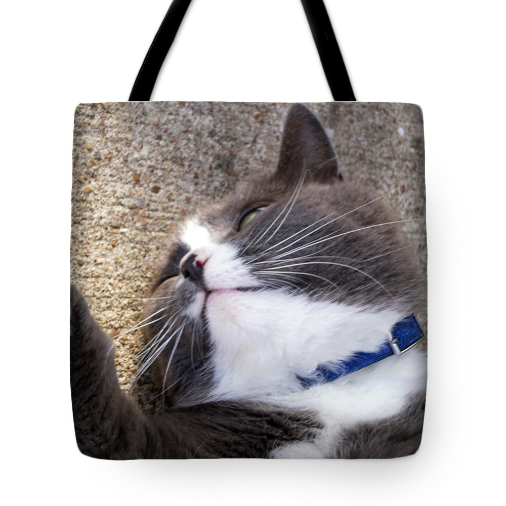 Animals Tote Bag featuring the photograph A Wink And A Smile by Jan Amiss Photography