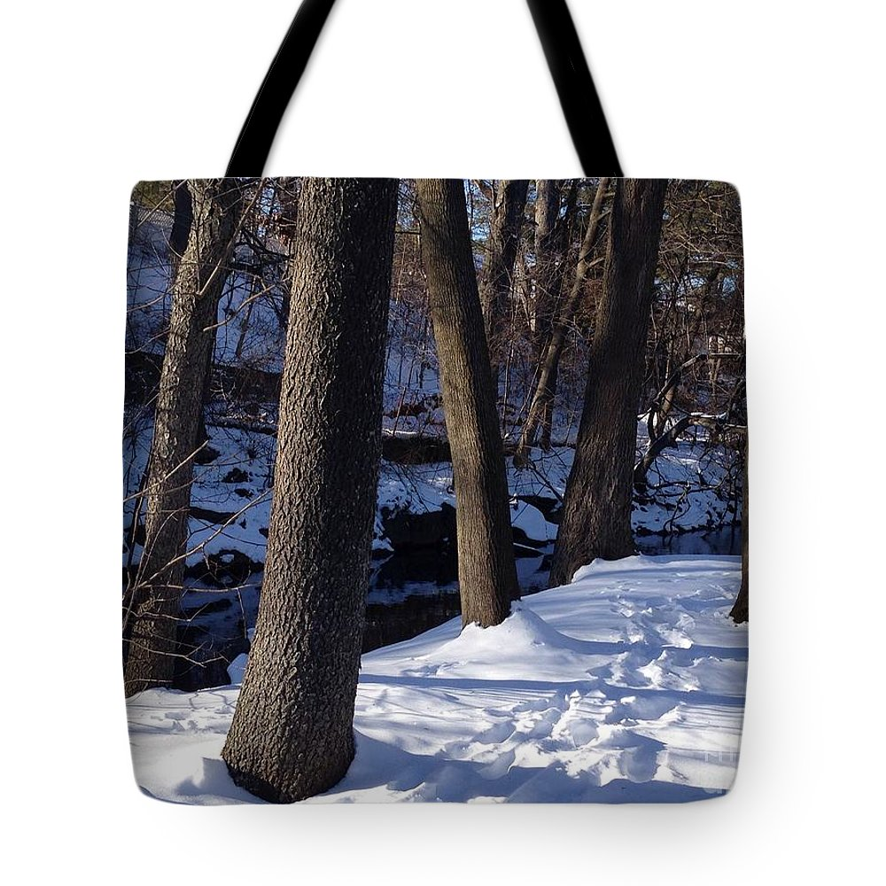 Winter Tote Bag featuring the photograph A Winter Day In New York by Christy Gendalia