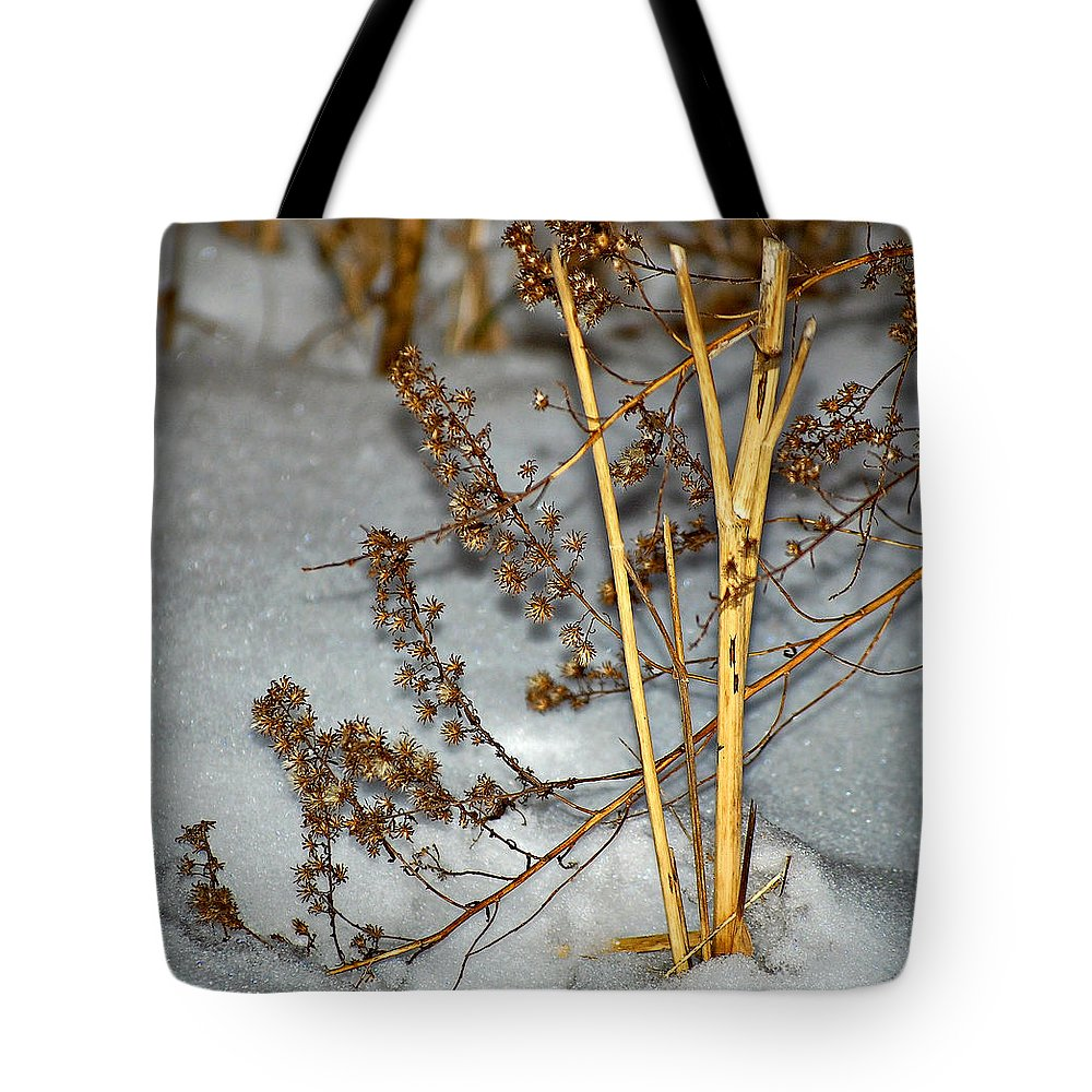 Snow Tote Bag featuring the photograph A Winter Tale by Steve Harrington
