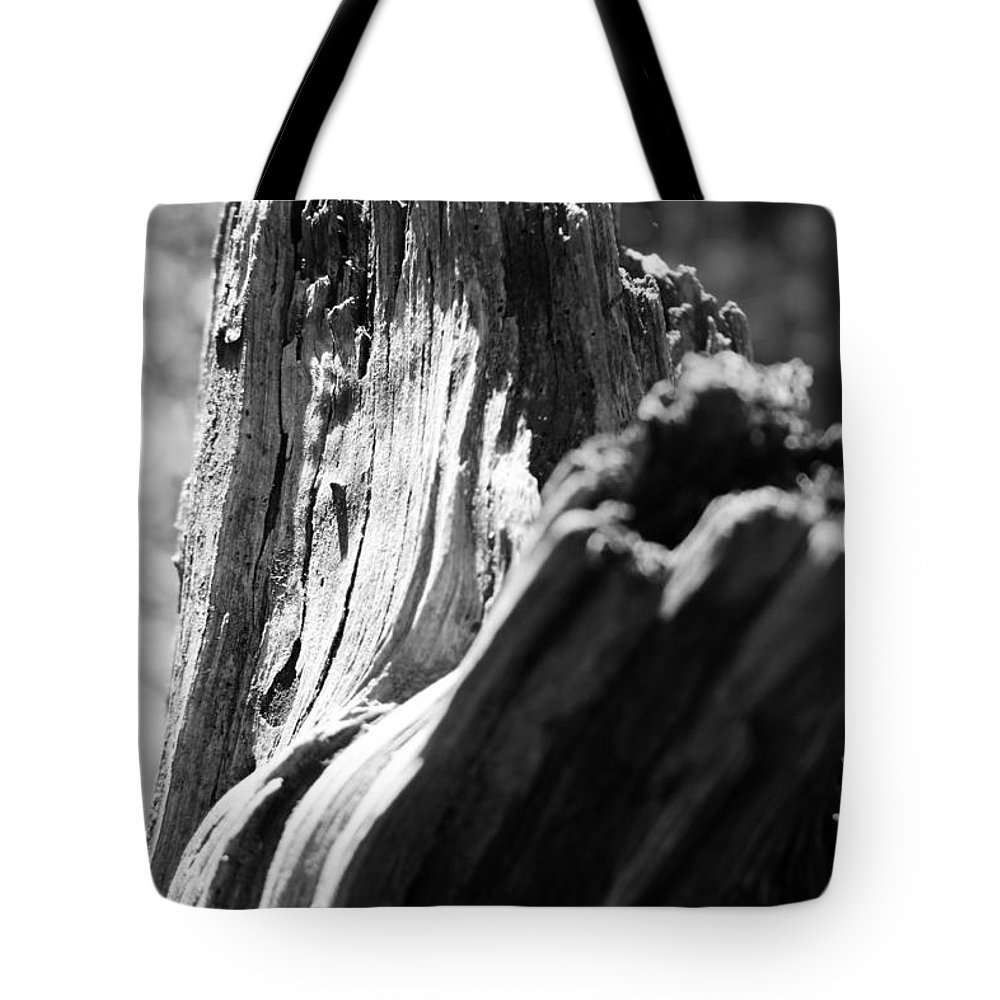 Kelly Hazel Tote Bag featuring the photograph Abstract Of A Broken Tree by Kelly Hazel