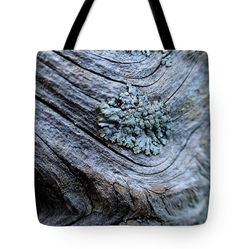 Moss Tote Bag featuring the photograph Graceful Gray 2 by Lora Louise