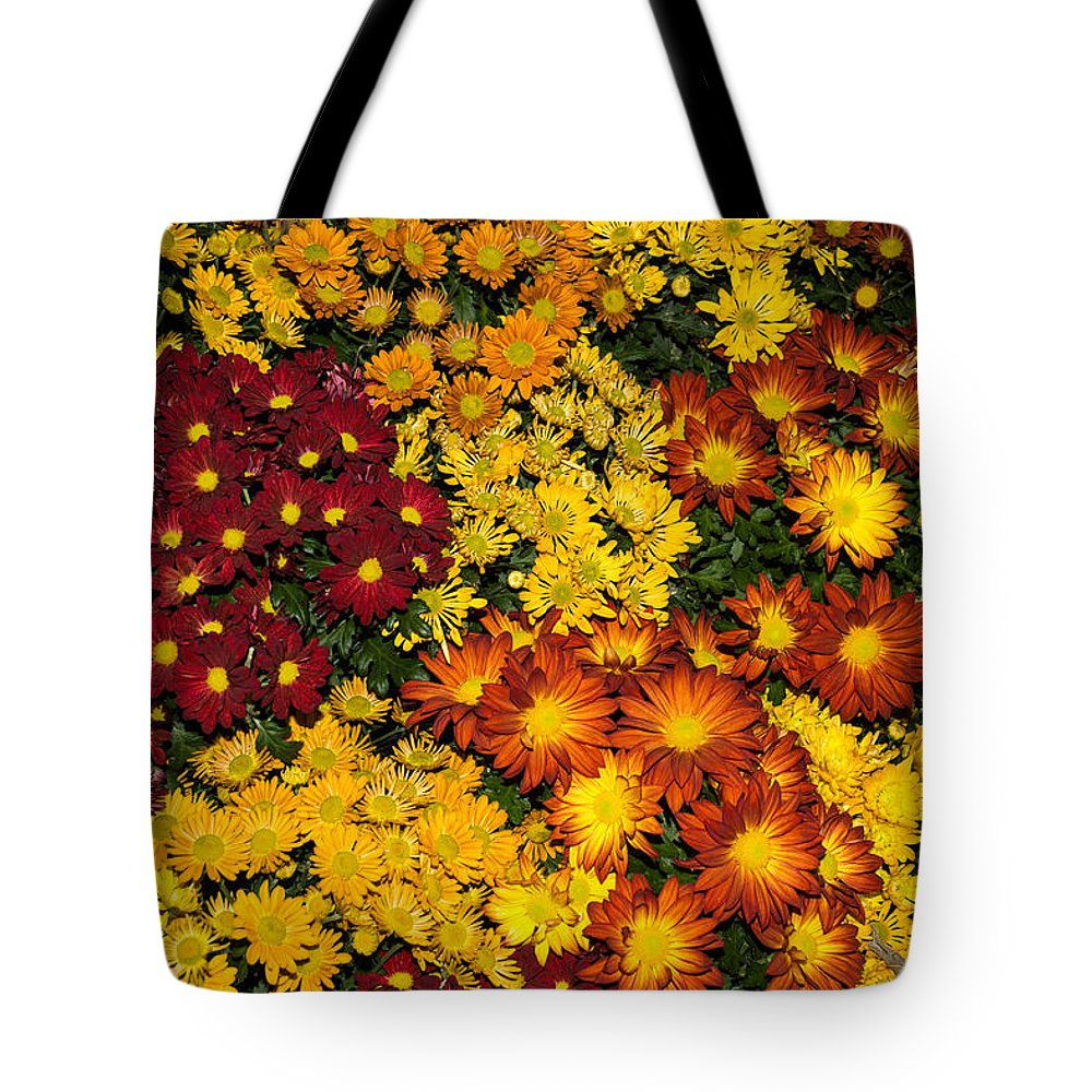 Abundance Tote Bag featuring the photograph Abundance Of Yellows Reds And Oranges by Georgia Mizuleva