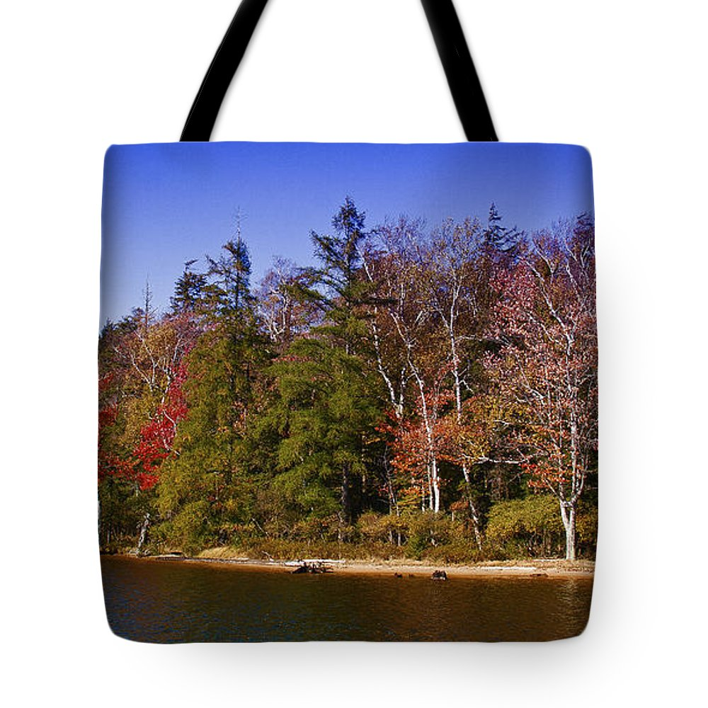 Adirondack's Tote Bag featuring the photograph Adirondack Color Xi by David Patterson