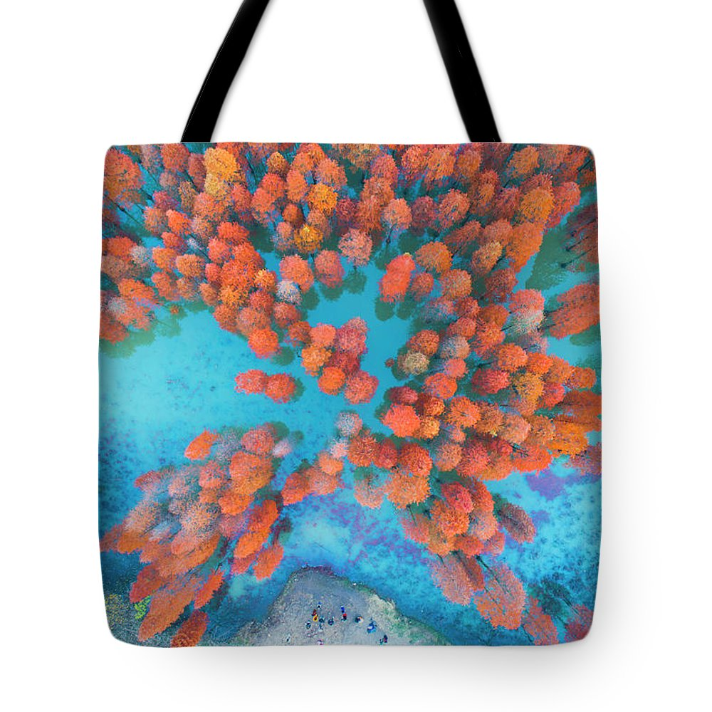 Tranquility Tote Bag featuring the photograph Aerial Drone View With Fir Tree Fall by Yaorusheng
