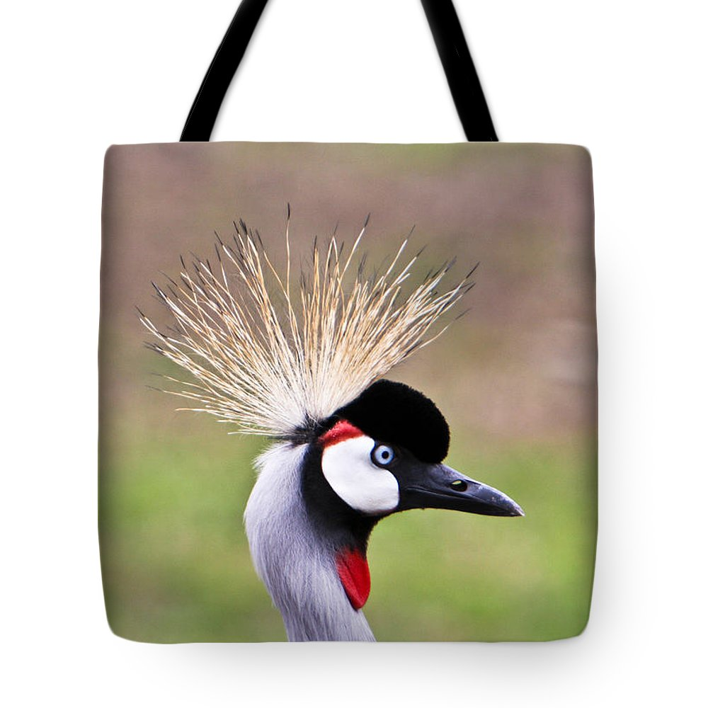 Golden Tote Bag featuring the photograph African Crowned Crane Portrait by Douglas Barnett