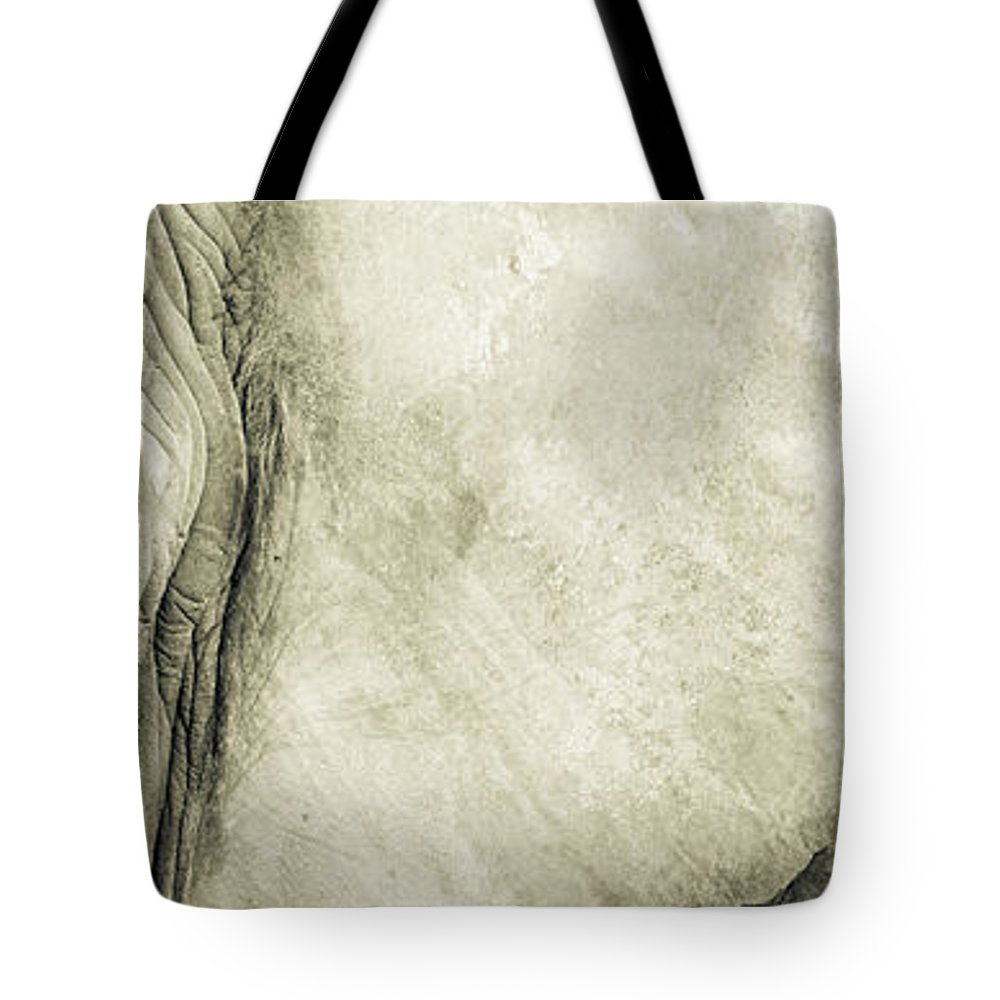 Toronto Zoo Tote Bag featuring the photograph African Elephant Detail With Eye by Peter v Quenter