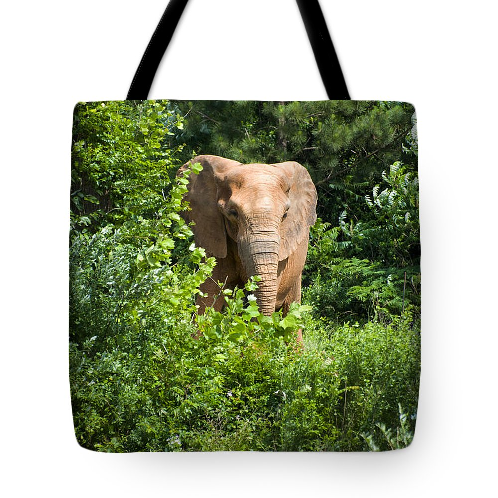 African Elephant Tote Bag featuring the digital art African Elephant Eating In The Shrubs by Chris Flees